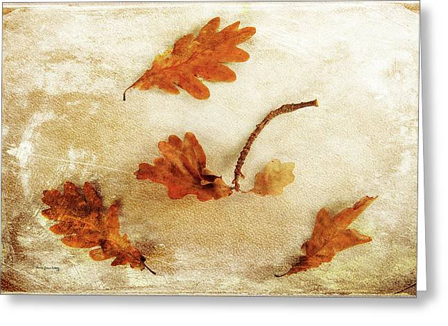 Greeting Card featuring the photograph Autumn Twist by Randi Grace Nilsberg