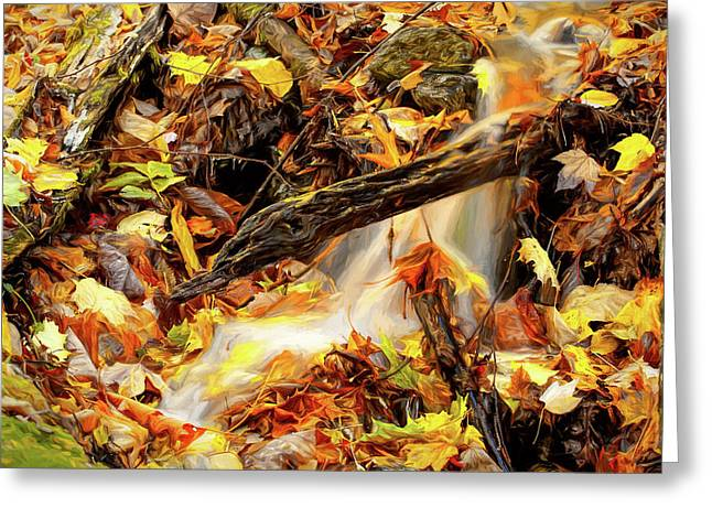 Autumn Water Flow 1 Greeting Card by Dan Carmichael