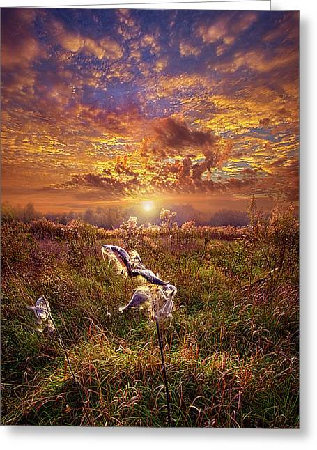 Greeting Card featuring the photograph Autumn Wings by Phil Koch