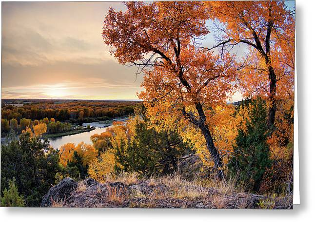 Autumns Best Greeting Card by Leland D Howard