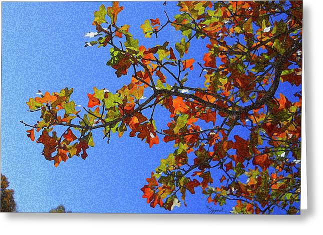 Autumn's Colors Greeting Card
