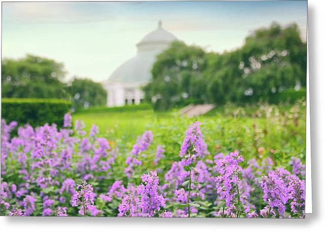 Lavender Lawn Greeting Card
