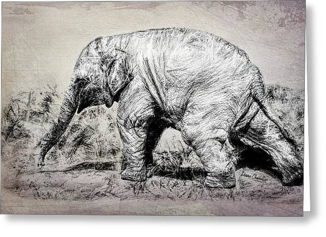 Baby Elephant Walk Greeting Card