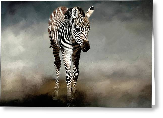 Baby Stripes Greeting Card