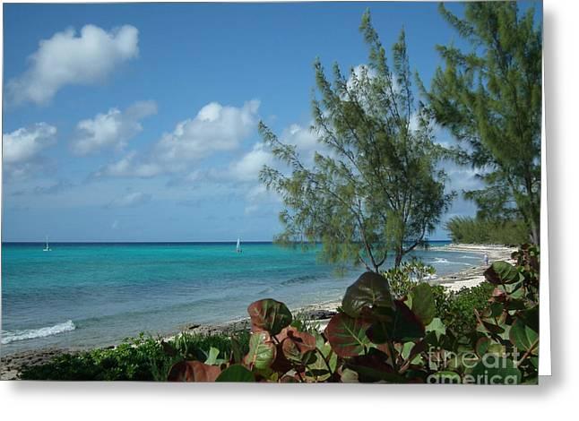 Bahama Breeze Greeting Card