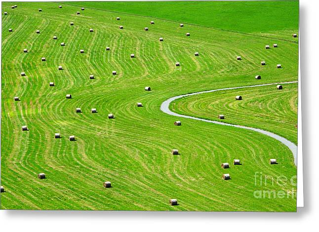Bales Of Hay On Meadow. Aerial View On Greeting Card