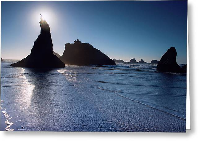 Greeting Card featuring the photograph Bandon Oregon Beach Stroll 102018 by Rospotte Photography