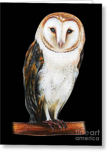 Barn Owl Drawing On Black Background Greeting Card