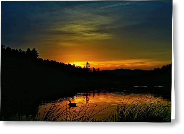Bass Lake Sunrise Duck Greeting Card