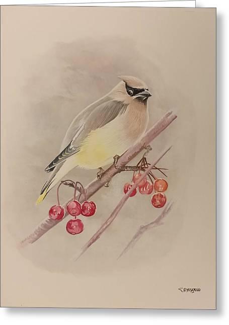 Beautiful Bird Greeting Card