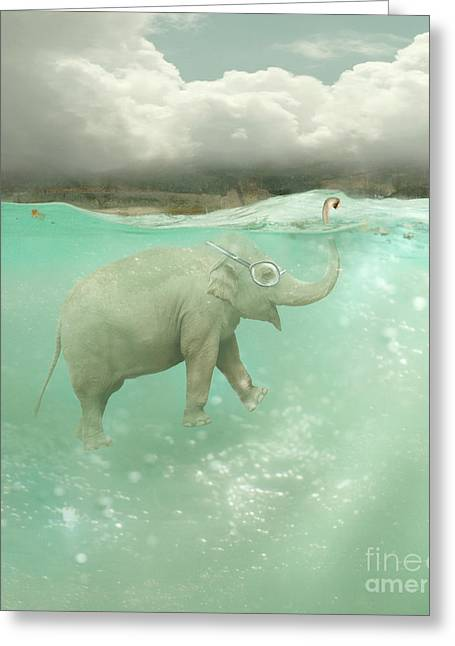 Beautiful Funny Elephant Swimmer Greeting Card