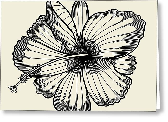 Beautiful Lily Painted In A Graphic Greeting Card