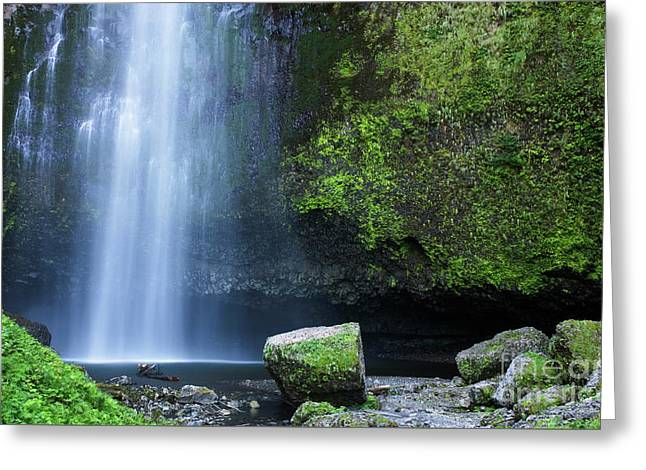 Greeting Card featuring the photograph Beautiful Multnomah Falls by Charmian Vistaunet