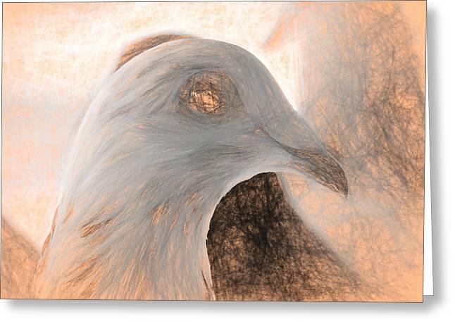 Beautiful Racing Pigeon Da Vinci Greeting Card