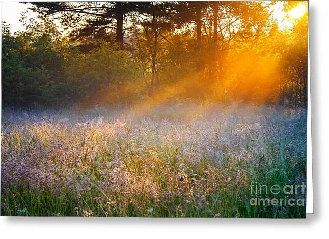 Beautiful Sunrise Over A Summer Greeting Card