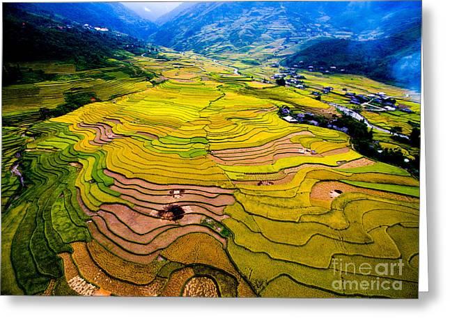 Beautiful Terraced Rice Field In Greeting Card