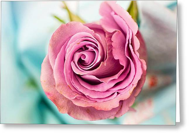 Beautiful Vintage Rose Greeting Card