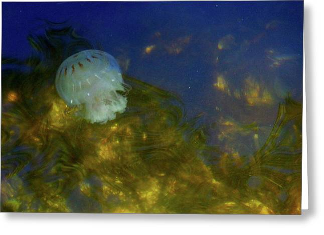 Below The Surface Greeting Card