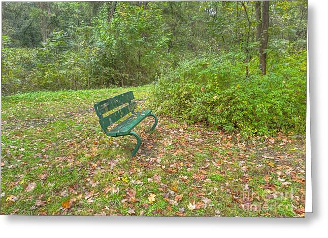 Bench Overlooking Pine Quarry Greeting Card