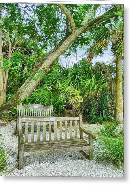 Bench View Greeting Card