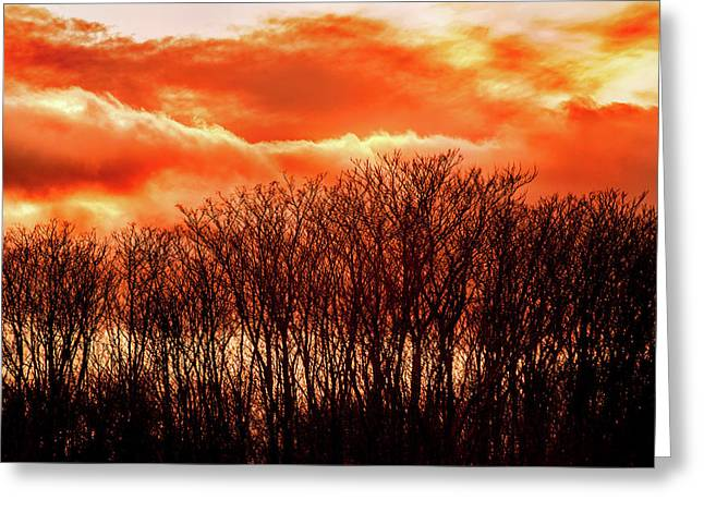 Bhrp Sunset Greeting Card