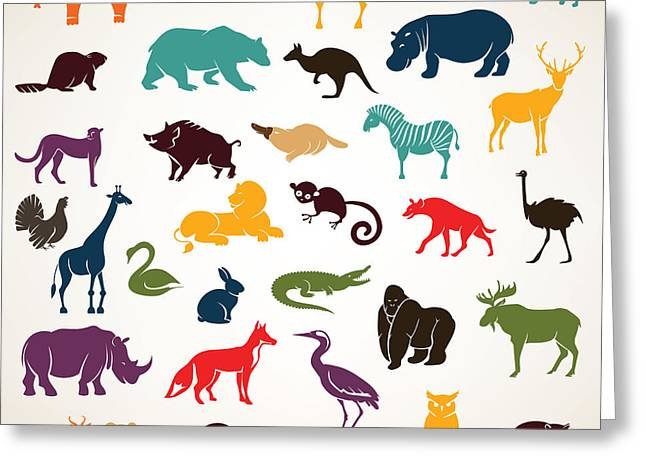 Big Set Of African And European Animals Greeting Card