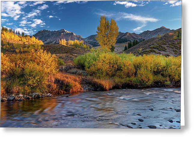 Big Wood River Color Greeting Card by Leland D Howard