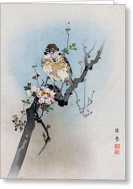 Bird And Petal Greeting Card