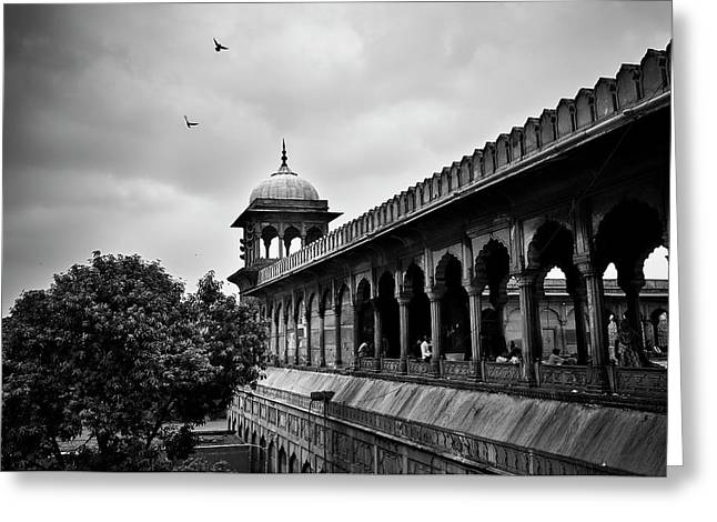 Birds Over The Jama Masjid Greeting Card
