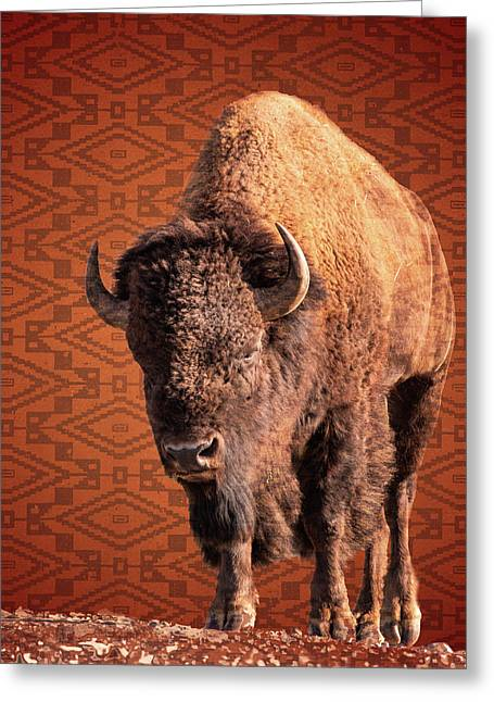 Bison Blanket Greeting Card