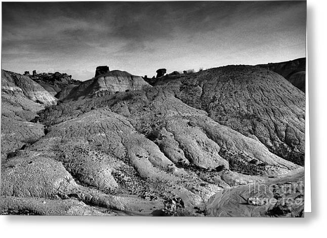 Black And White New Mexico Isolation  Greeting Card