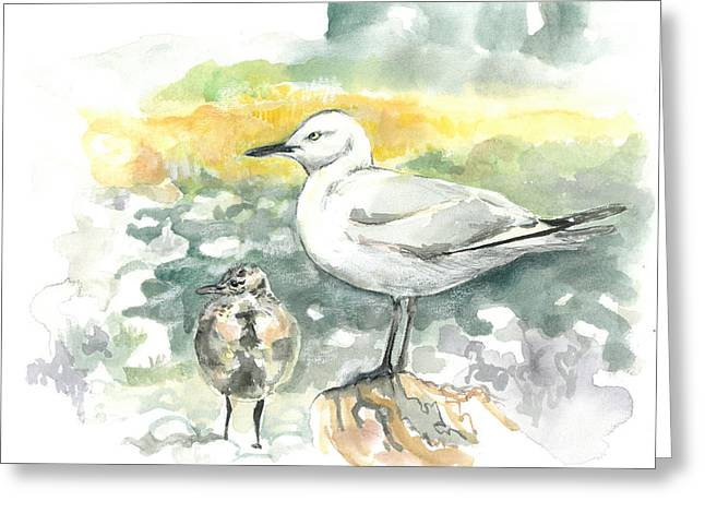 Black-billed Gull Family Greeting Card