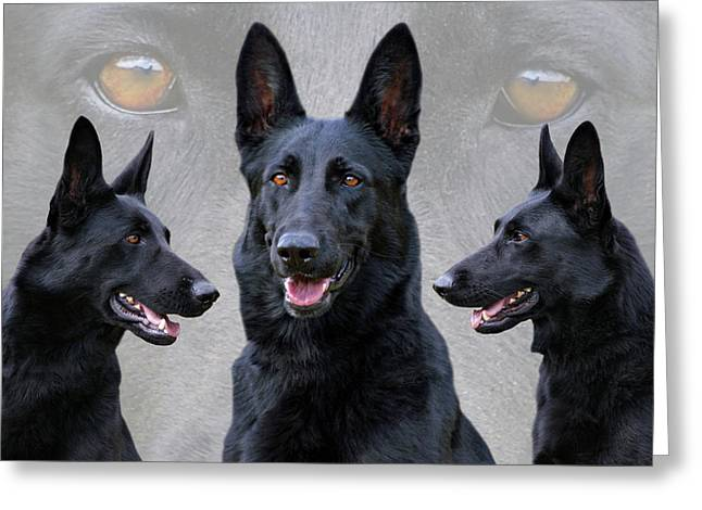 Black German Shepherd Dog Collage Greeting Card