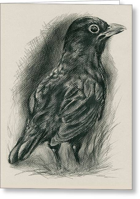 Greeting Card featuring the drawing Blackbird In The Grass by MM Anderson