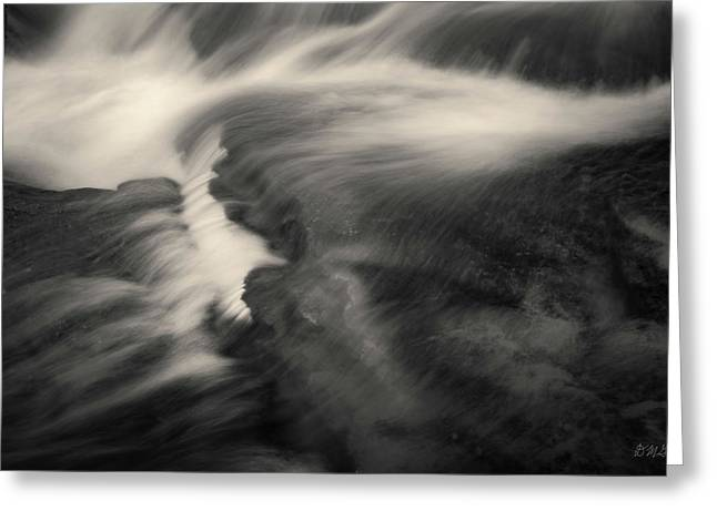 Blackstone River Xxv  Toned Greeting Card by David Gordon