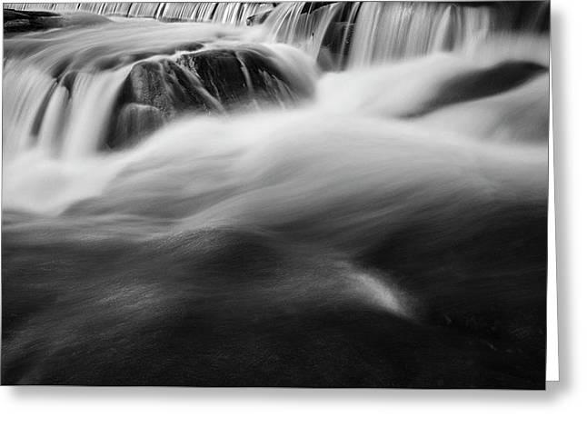 Blackstone River Xxxviii Bw Greeting Card by David Gordon