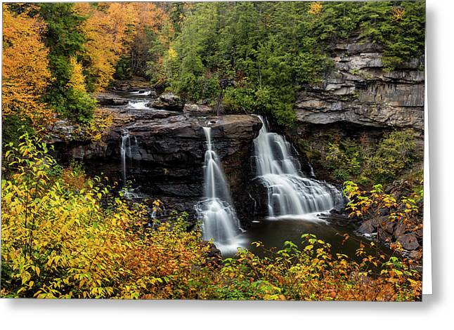 Blackwater Falls In Autumn Greeting Card