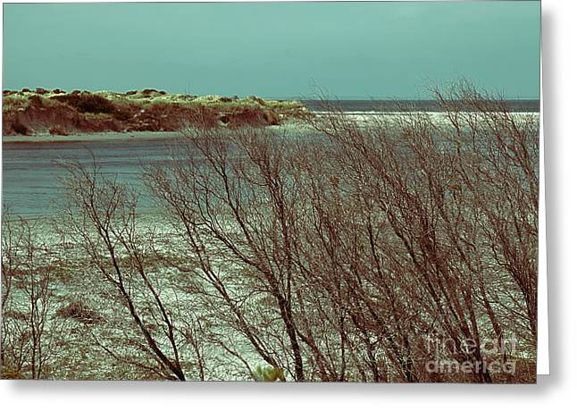 Greeting Card featuring the photograph Blackwood Rivermouth, Augusta, Western Australia by Elaine Teague
