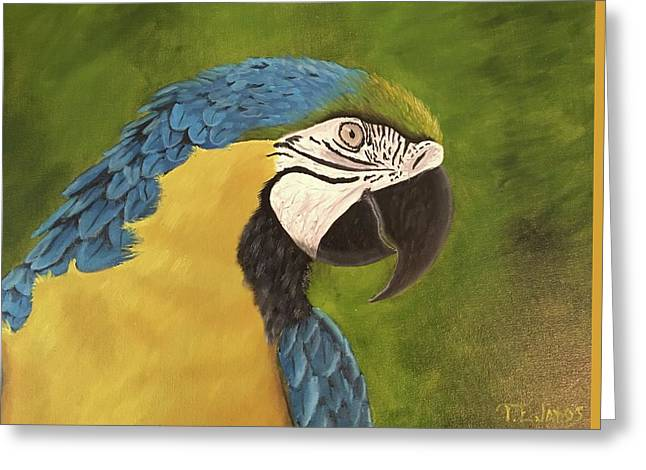 Blue And Gold Mccaw Greeting Card