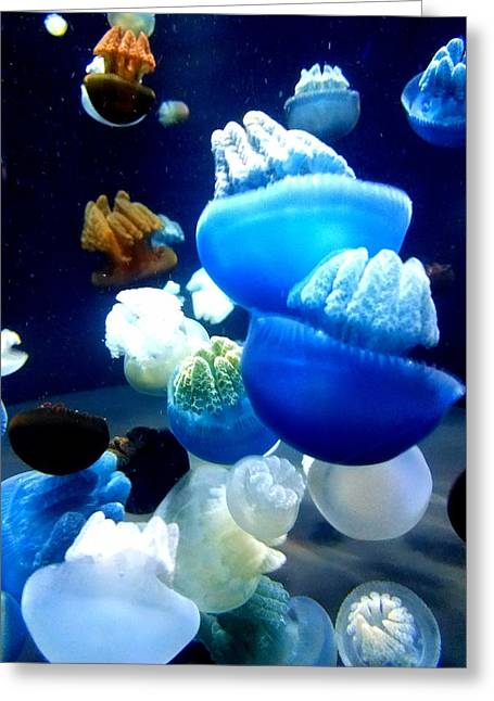 Blue Blubber  Greeting Card