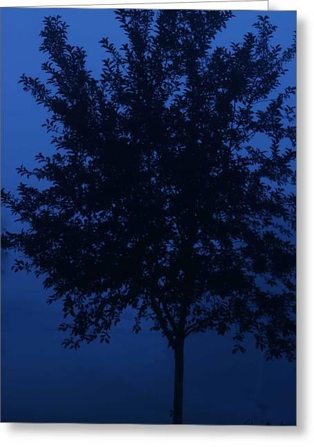 Blue Cherry Tree Greeting Card