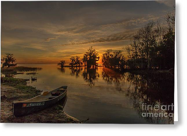 Blue Cypress Canoe Greeting Card