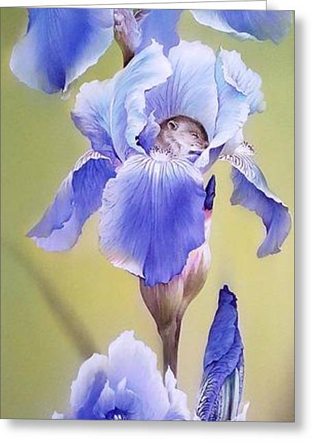 Blue Irises With Sleeping Baby Mouse Greeting Card
