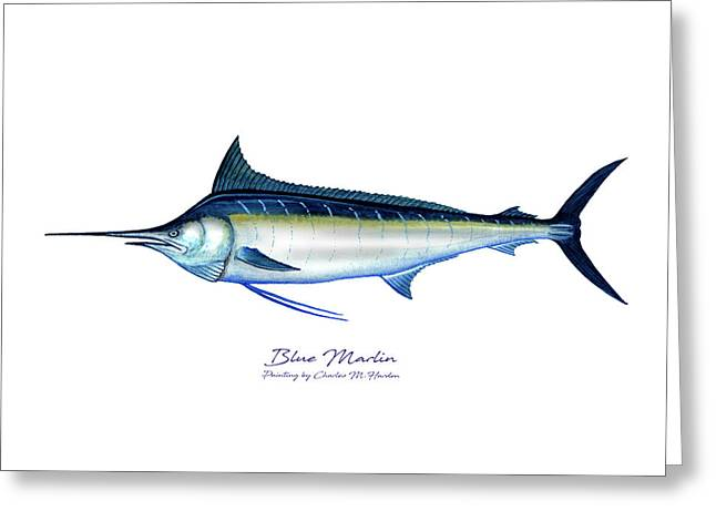 Blue Marlin Greeting Card