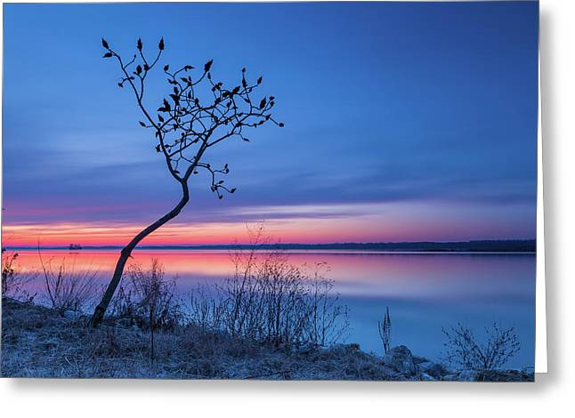 Blue Silence Greeting Card