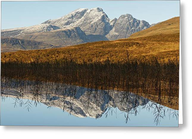 Greeting Card featuring the photograph Blue Skye by Stephen Taylor