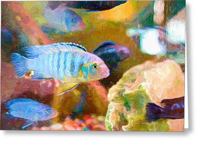 Greeting Card featuring the digital art Blue Zebra Lake Malawi Van Gogh by Don Northup