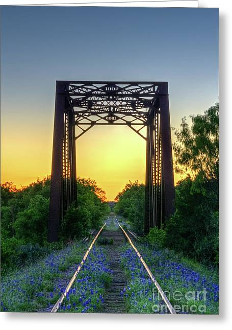 Bluebonnets On The Abandoned Railroad Greeting Card