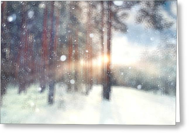 Blurred Background Forest Snow Winter Greeting Card
