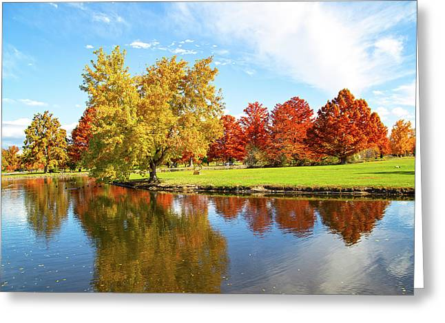 Greeting Card featuring the photograph Boise Fall Foliage by Dart and Suze Humeston